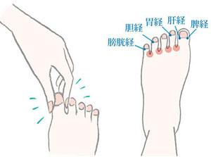 足の指や甲